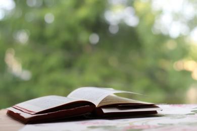 S.N.U.F.F. -  bestsellerowa postapokaliptyczna powieść