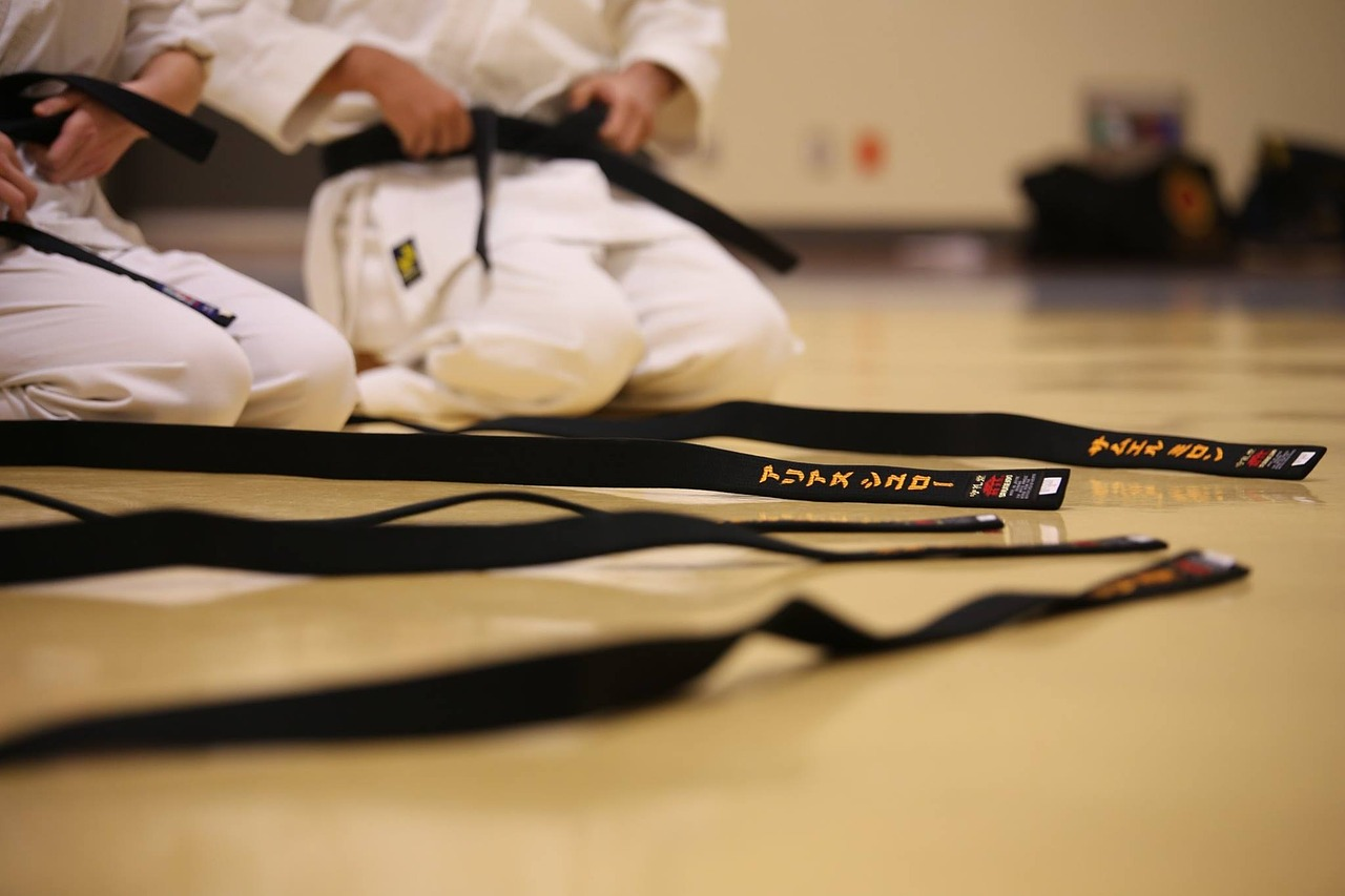 Mistrzostwa Śląska w Karate Kyokushin - 6 medali dla sosnowieckich karateków